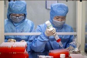 چین از کشف واکسن کرونا خبر داد + جزئیات