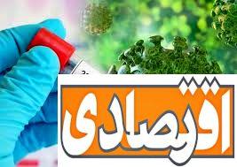 ایران با استفاده از پلاسما کرونا را درمان کرد ؟