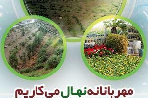 نگاهی بر توسعه پایدار و اهمیت درختکاری در گهرزمین