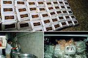 اهداء ۵۰۰ پرس غذای گرم به خانواده های نیازمند